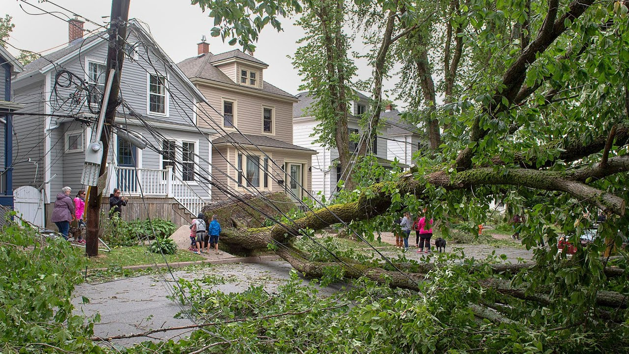 Thousands of Maritimers left without power in wake of Dorian 1