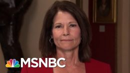 Cheri Bustos: Dan McCready 'Did A Lot Right' In NC-09 Race | MTP Daily | MSNBC 9