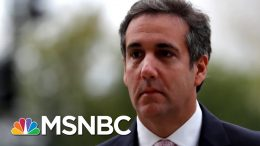Michael Cohen Helping Manhattan DA Investigate Trump Org: Source - The Day That Was | MSNBC 2
