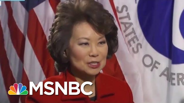 House Probing Elaine Chao On Questions Of Conflict With Family Business | Rachel Maddow | MSNBC 1