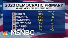 NBC/WSJ Poll: Joe Biden, Warren Rising, Harris Plummets | MTP Daily | MSNBC 7