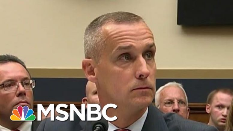 Lewandowski Goes 'Ride Or Die' For Trump At Impeachment Hearing | The Beat With Ari Melber | MSNBC 1