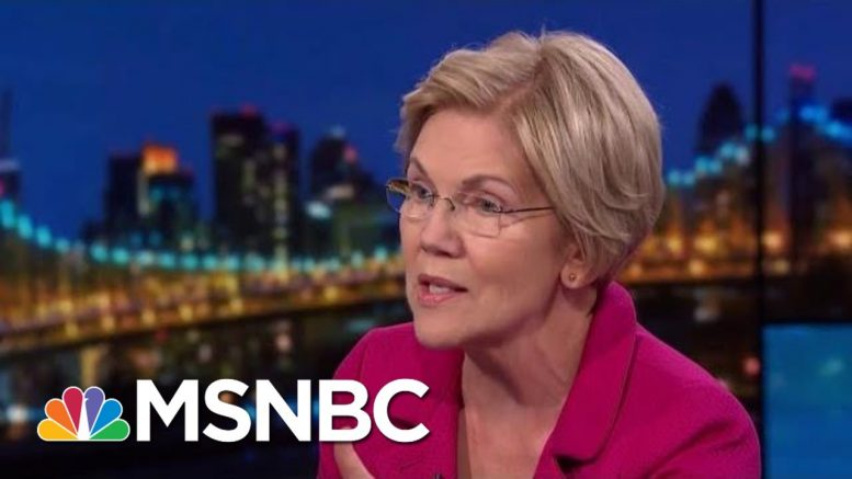 Elizabeth Warren Targets 'Corruption Right At The Heart Of Our Government' | Rachel Maddow | MSNBC 1