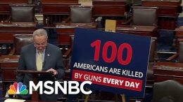 New PSA Designed To Jolt The Gun Debate In Washington Out Of Its Stalemate | Deadline | MSNBC 5