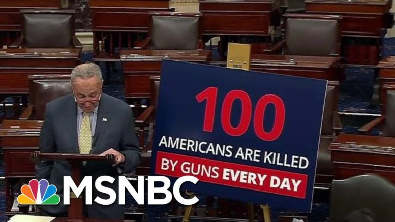 New PSA Designed To Jolt The Gun Debate In Washington Out Of Its Stalemate | Deadline | MSNBC 1