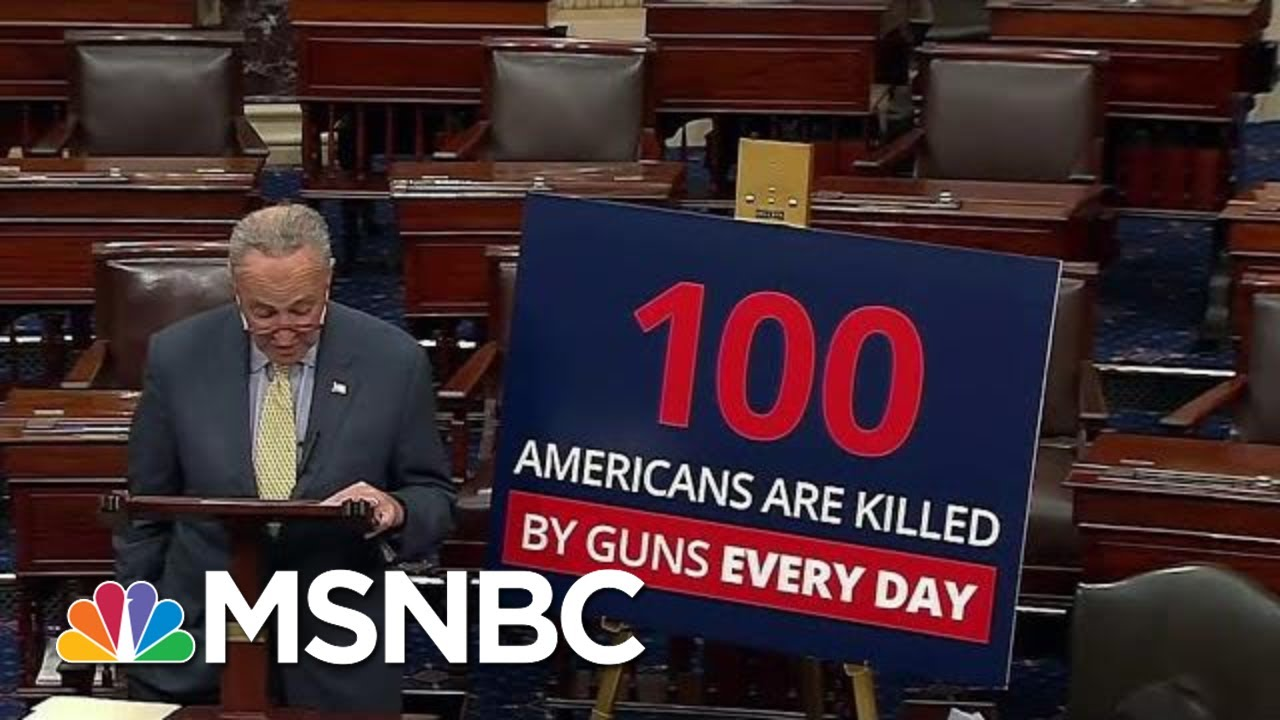 New PSA Designed To Jolt The Gun Debate In Washington Out Of Its Stalemate | Deadline | MSNBC 6