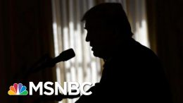 Day 974: Trump Reportedly Urged UKR To Investigate Biden's Son Eight Times | The 11th Hour | MSNBC 3