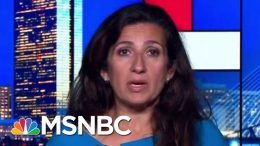 Glare Of Public Outrage Budges Trump Admin On Medical Deferrals | Rachel Maddow | MSNBC 2