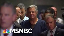In Trump's Ukraine Scandal, A Reprise Of Sketchy 2016 Characters | Rachel Maddow | MSNBC 1