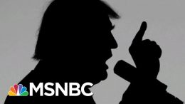 President Donald Trump's Long, Bizarre History Of Accusing People Of Treason | The 11th Hour | MSNBC 9