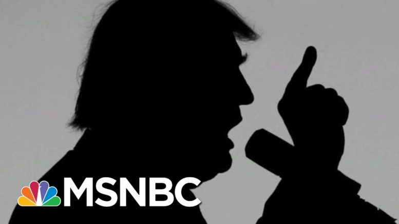 President Donald Trump's Long, Bizarre History Of Accusing People Of Treason   The 11th Hour   MSNBC 1