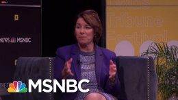 Amy Klobuchar: We're Going To Build A Blue Wall And Donald Trump Is Going To Pay For It. | MSNBC 5