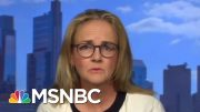 Pentagon Moving Military Funds To Build Trump's Wall 'Ineffective' And 'Stupid' | MTP Daily | MSNBC 3