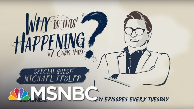 White Identity Politics with Michael Tesler | Why Is This Happening? - Ep 27 | MSNBC 1