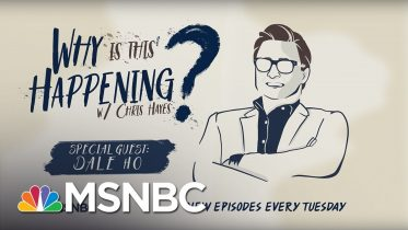 The Trump Scheme To Rig The Census with Dale Ho | Why Is This Happening? - Ep 29 | MSNBC 6
