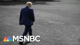 Yale History Professor: U.S. Hasn't Been This Divided Since Before Civil War | The 11th Hour | MSNBC 4