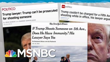 Trump Lawyers Argue His Crimes Can't Be Investigated, Prosecuted | Rachel Maddow | MSNBC 6