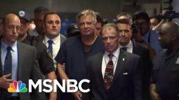 Despite Twists, President Donald Trump Saga Actually Just One, Big Scandal | Rachel Maddow | MSNBC 9