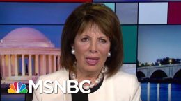 House GOP Members Storm Secure Room To Delay Witness - The Day That Was | MSNBC 7