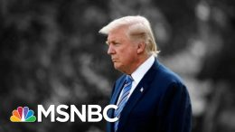 NYT: Trump Suggested U.S Troops Could Shoot Immigrants In The Legs At Border | The 11th Hour | MSNBC 4