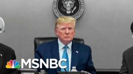 Did Trump Make Up Details About Raid That Killed ISIS Leader Al-Baghdadi? | The 11th Hour | MSNBC 7