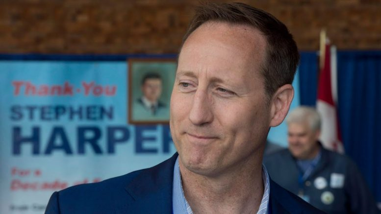 Is MacKay planning to challenge Scheer for leadership of Conservative Party? 1
