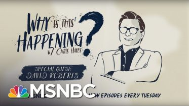 The Information Crisis with David Roberts | Why Is This Happening? - Ep 33 | MSNBC 6