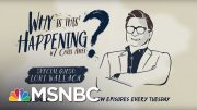 Trade Wars with Lori Wallach | Why Is This Happening? - Ep 38 | MSNBC 3