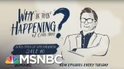BONUS: The Census Decision with Dale Ho | Why Is This Happening? - Ep 40 | MSNBC 3