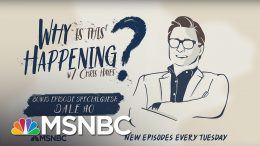 BONUS: The Census Decision with Dale Ho | Why Is This Happening? - Ep 40 | MSNBC 7
