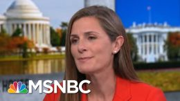 Veteran Testifying Before Congress Attacked By Trump's Allies - The Day That Was   MSNBC 3