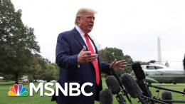 Trump: Ukraine And China 'Should Investigate' The Bidens   MSNBC 8