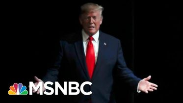 Day 987: The President In His Own Words Seems To Violate His Oath Of Office | The 11th Hour | MSNBC 10