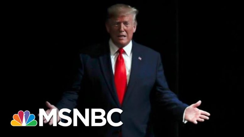 Day 987: The President In His Own Words Seems To Violate His Oath Of Office | The 11th Hour | MSNBC 1