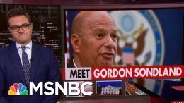 President Donald Trump Donor At Center Of Ukraine Scandal | All In | MSNBC 3