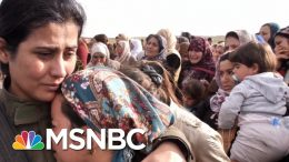 The Rise And Fall Of ISIS: The Most Brutal Terrorist Group In Modern History | MSNBC 1