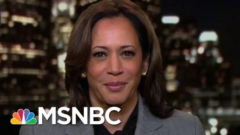 Kamala Harris On President Donald Trump Impeachment Investigation | The Last Word | MSNBC 1
