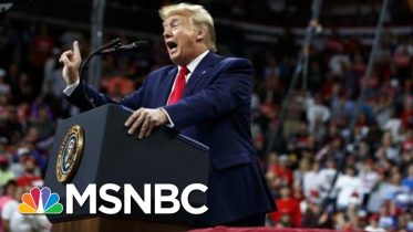 James Carville: Beating Trump Is The Only Thing That Matters In 2020 | The 11th Hour | MSNBC 10