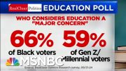 Polls Show Education Is A 'Major Concern' For 2020 Voters | Velshi & Ruhle | MSNBC 4