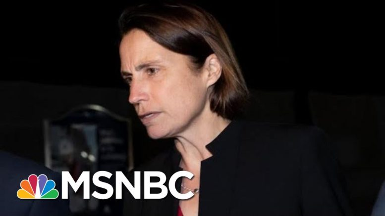 Trump's Former Russia Aide Fiona Hill Testifies To Hill Lawmakers | The 11th Hour | MSNBC 1