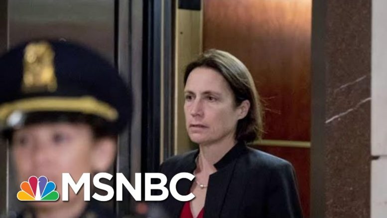 Who Is Fiona Hill, The Woman Who Testified Monday? | Morning Joe | MSNBC 1