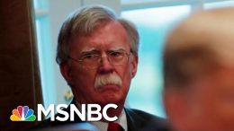 Susan Rice On President Donald Trump's Phone Call To Ukraine | All In | MSNBC 7