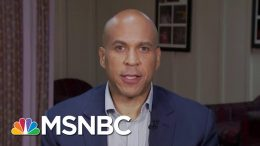 Booker: We Can 'Shellac' Trump If Dems Stay Unified | Morning Joe | MSNBC 7
