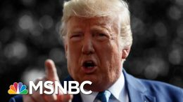 President Trump Rebuked By House For Syria Decision And 'Meltdown' - The Day That Was | MSNBC 3