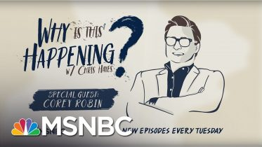 The Conservative Movement With Corey Robin   Why Is This Happening? - Ep 3   MSNBC 10