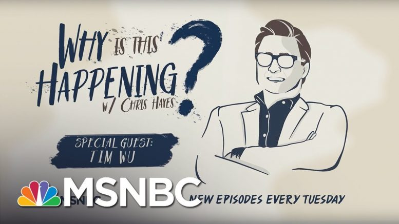 Who Broke The Internet? With Tim Wu | Why Is This Happening? - Ep 5 | MSNBC 1
