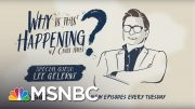 Separating Immigrant Families With Lee Gelernt | Why Is This Happening - Ep 6 | MSNBC 3