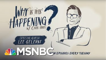 Separating Immigrant Families With Lee Gelernt | Why Is This Happening - Ep 6 | MSNBC 6