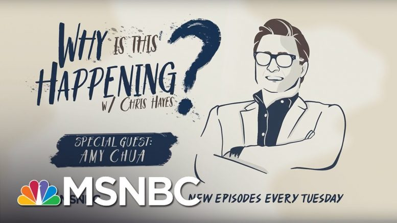 Political Tribalism With Amy Chua | Why Is This Happening? - Ep 7 | MSNBC 1