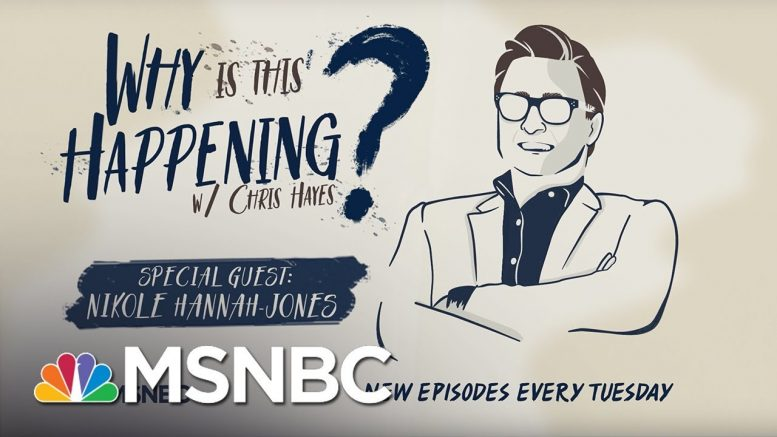 School Segregation In 2018 with Nikole Hannah-Jones | Why Is This Happening - Ep 14 | MSNBC 1
